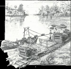 Chargement d'un bateau bananier au Costa Rica. Crédits: L'Illustration, mai 1903