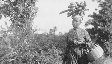 Martiniquaise transportant un régime de bananes en 1899. Crédits : Gallica BNF