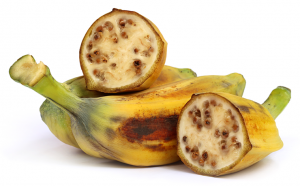 Banane sauvage avec ses graines. Crédits : Adobe Stock