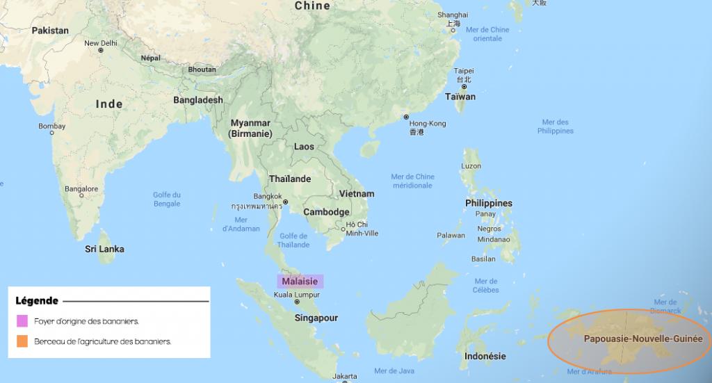 L'Asie : berceau de la banane. Crédits : UGPBAN