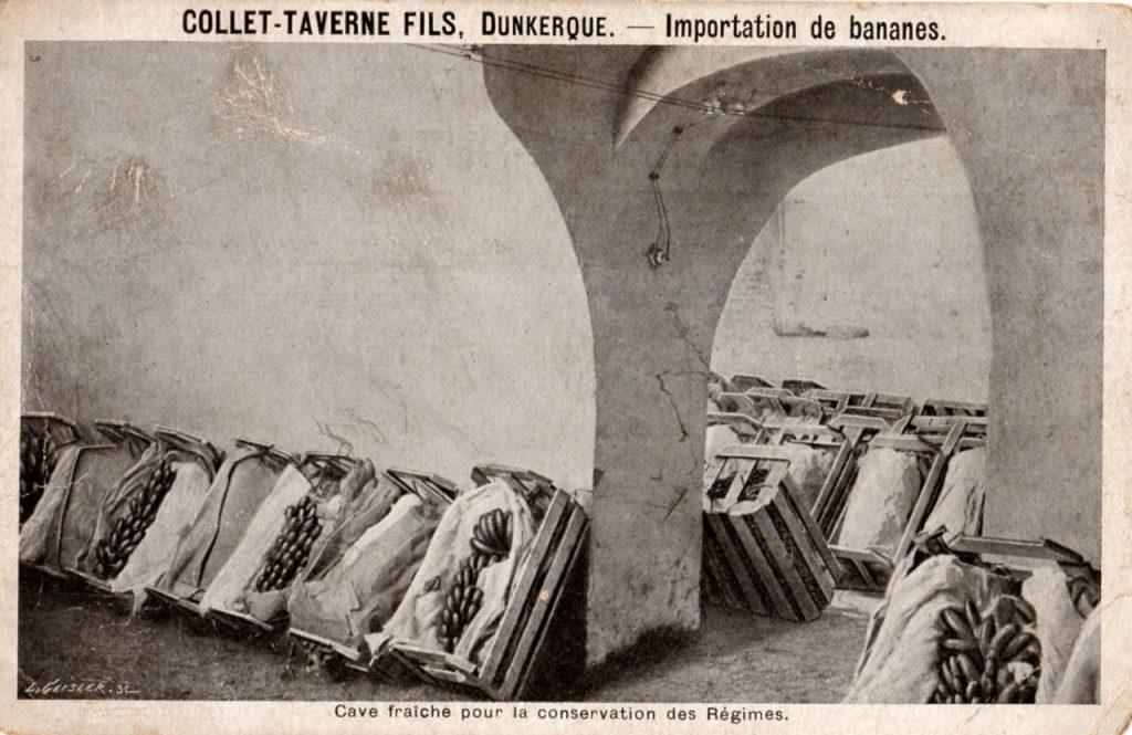 Cave Collet-Taverne